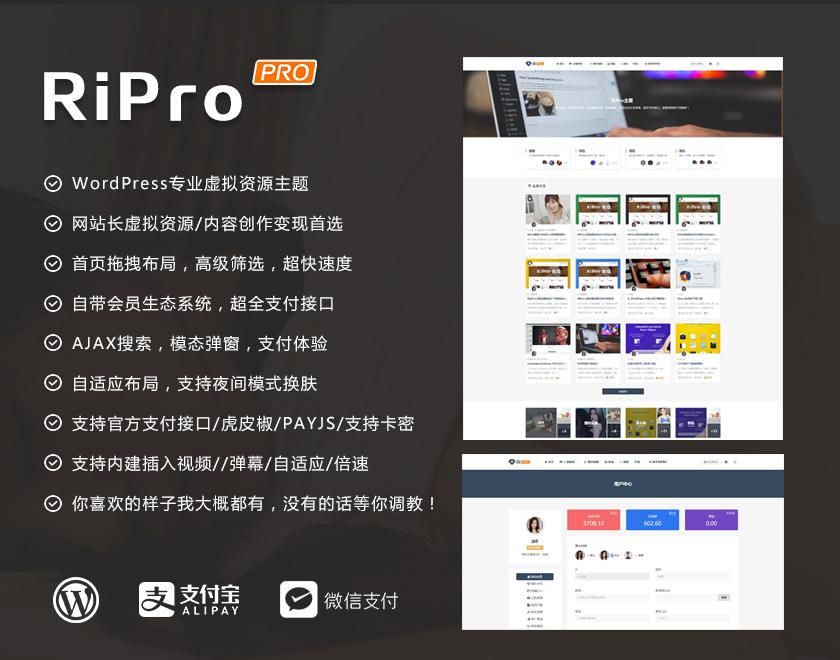 ripro5.0商业破解版.jpg